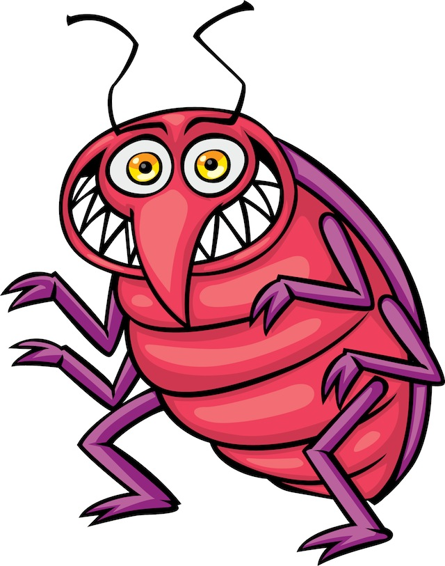 Bed Bug Photos, Clipart Images & Pics: What do Bed Bugs ...