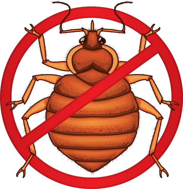 No Bed Bugs Sign.